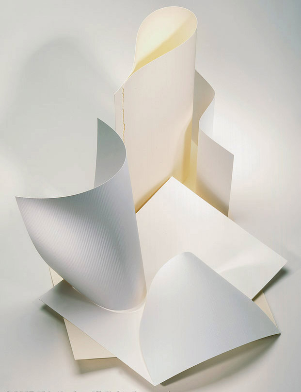 paper_sculpture_copy copy